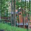 House in woods N MI
