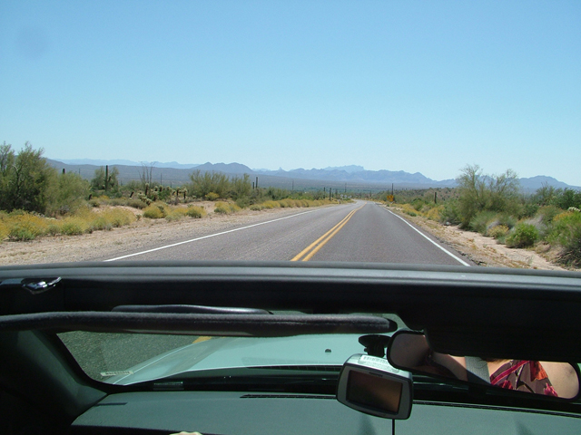 Cactus and Convertibles