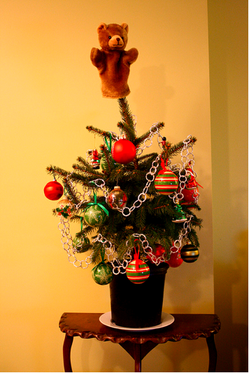 this is our tree By sween on Flickr