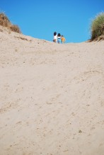 Wandering over Sleeping Bear Dunes