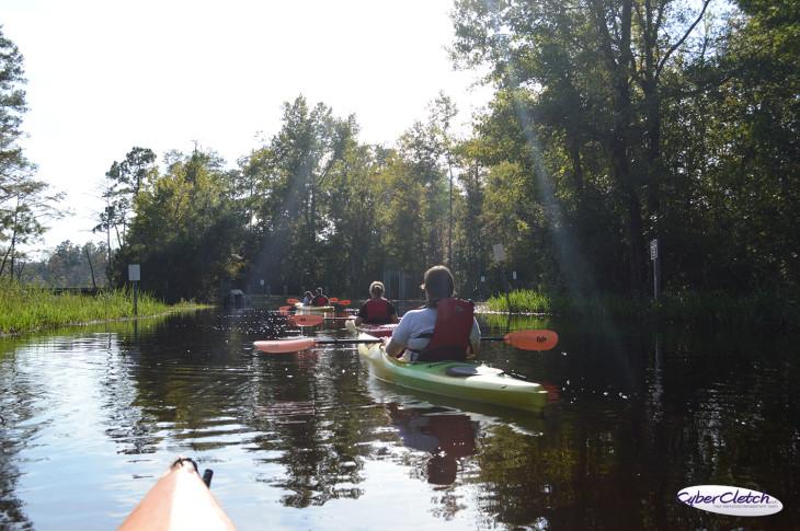 Kayaking down the road - Alligator River refuge