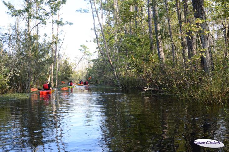 Alligator River kayaks