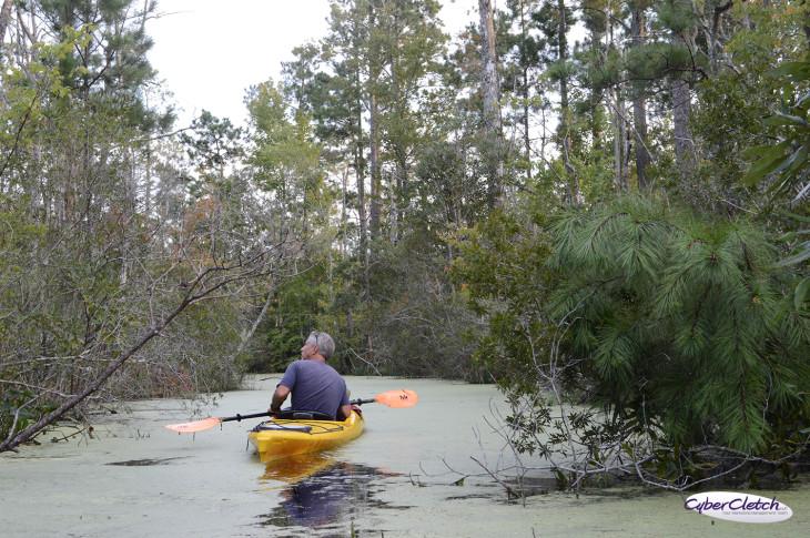DJ Tour Guide Coastal Kayak