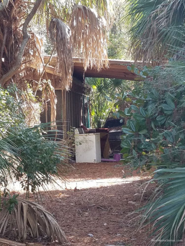 racoon-river-campsite-18