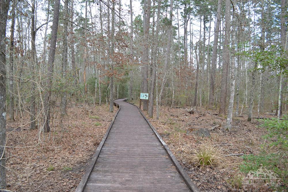 Boardwalk at Lake Livingston State Park