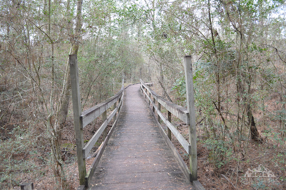 Another boardwalk trail