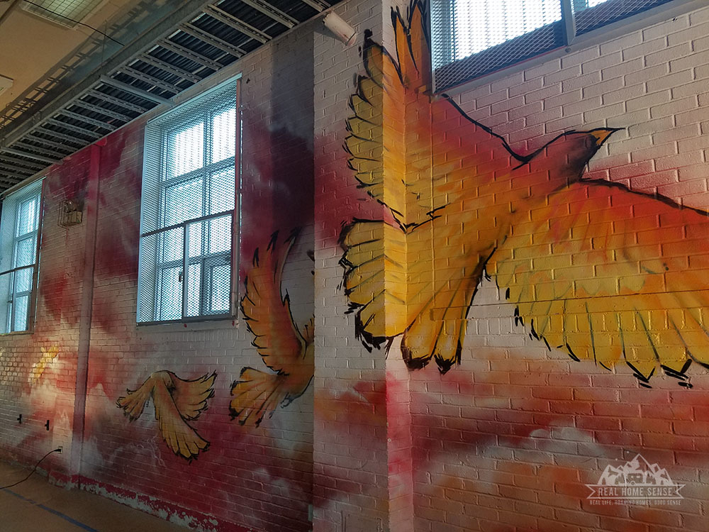 Bird in Flight painted on wall of Treatment Center Gym