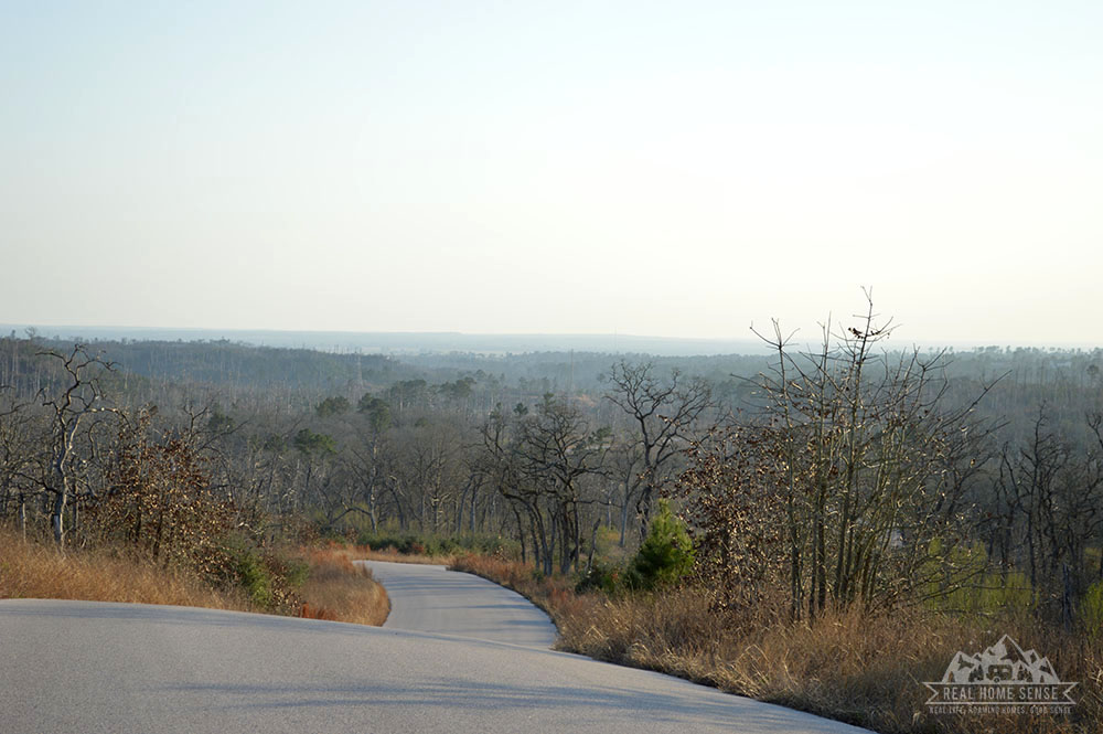 Bastrop State Park in Texas