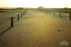 Packery Flats Coastal Habitat Path at Sunset