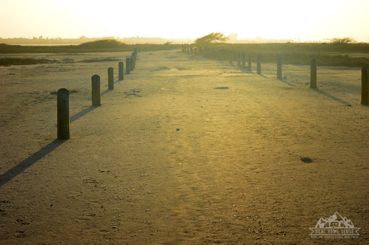Packery Flats Coastal Habitat Path at Sunset